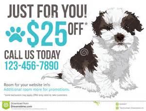 grooming advertisement postcard template stock vector