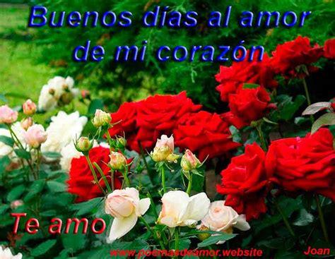 imágenes de buenos días con flores hermosas im 225 genes de buenos d 237 as poemas de amor