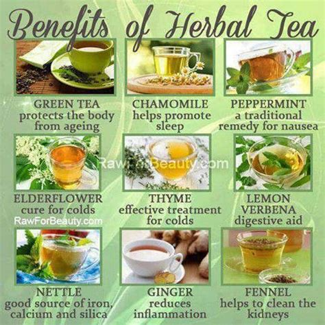 The Their Tea by Herbal Tea Benefits Coffee And Tea Herbal
