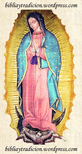 imagenes de la virgen de guadalupe medio cuerpo las maravillas de la virgen de guadalupe biblia y tradici 243 n