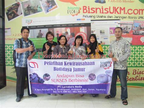 Bibit Jamur Tiram Yogyakarta budidaya jamur tiram bersama mompreneur