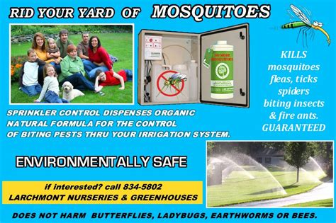 how to rid backyard of mosquitoes how to rid your backyard of mosquitoes 28 images how