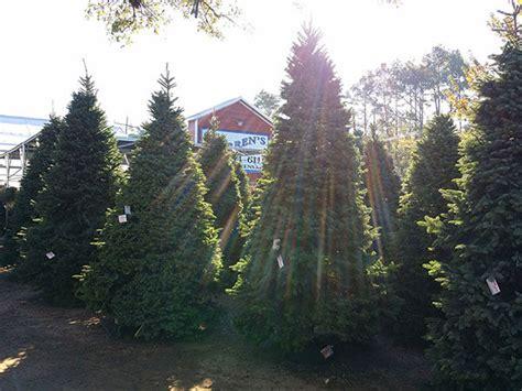 houston garden center christmas trees warren s kingwood santa is coming to town best houston garden center kingwood tx warren s