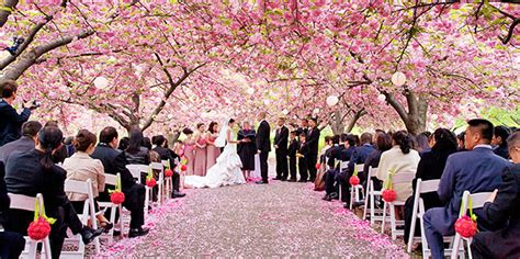 Botanical Gardens Nyc Wedding Botanic Garden New York Weddings