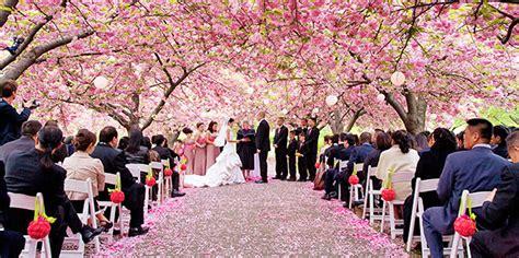Wedding Gowns Brooklyn