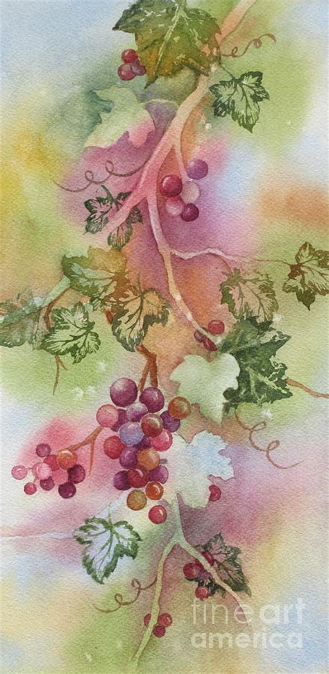 image gallery watercolor grapevine