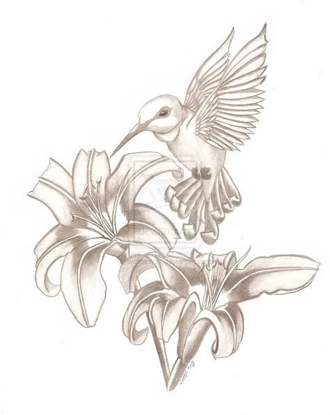 hummingbird tattoo for men cool hummingbird sketch tattoomagz