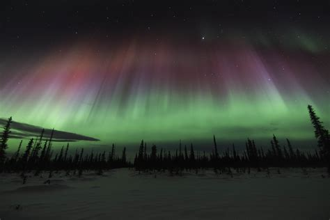 when are the northern lights get mesmerized with the northern lights of alaska found