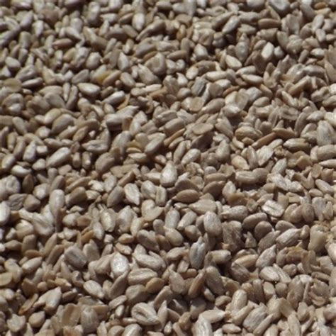 hulled sunflower small quantity view bird food product