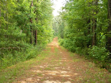 Mississippi State Parks With Cabin Rentals by Clarkco State Park A Mississippi Park Located Near Meridian