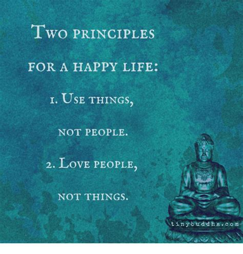 Happy Life Meme - two principles for a happy life i use things not people 2
