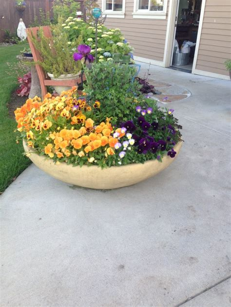 Decorative Concrete Planters by Pots Pottery And Planters Concrete Decorative Pots