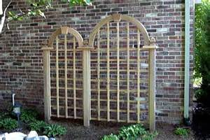 define trellis fancy creek landscaping