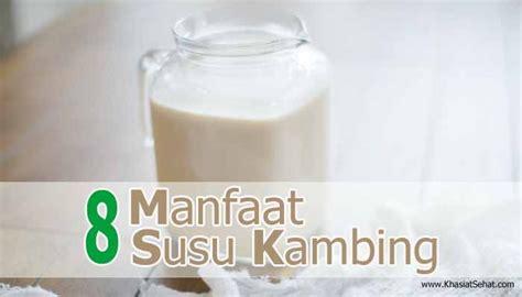 manfaat susu kambing  kesehatan khasiat sehat