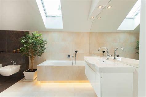 pflanzen im badezimmer pflanzen im badezimmer 183 ratgeber haus garten