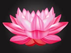 Lotus Culture Est Culture Exotique Lotus Vecteur T 233 L 233 Charger Des