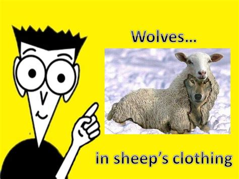 he was a wolf in sheep s clothing 2 volume 2 books pastor jim expounds sheepin it real