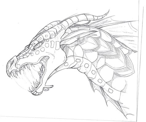 seawing dragon coloring page seawing sketch by thelittlewaterdragon on deviantart