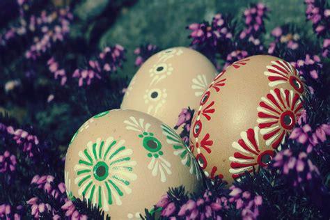 easter eggs  image  libreshot