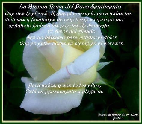 imagenes de rosas blancas con mensajes im 225 genes de rosas blancas con frases de amor imagenes de