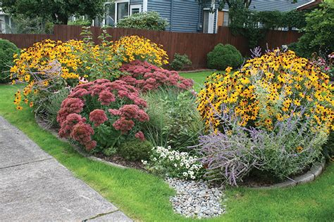 environment friendly rain gardens transformed