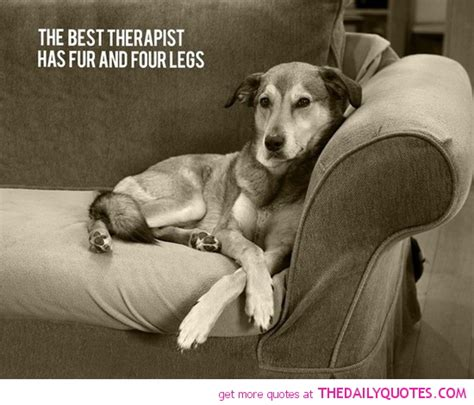 quote about dogs i my quotes quotesgram