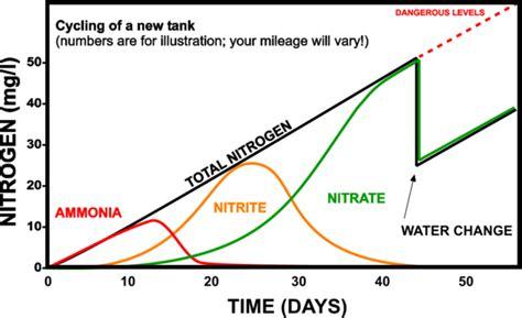 Do I Need To Cycle Tank If I Detox It by Fish Writes Freshwater Aquarium Nitrogen Cycle