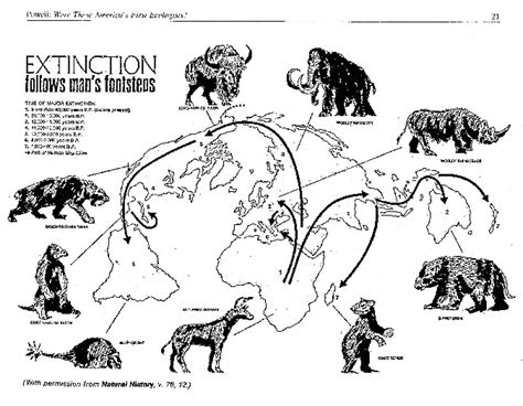 animal during great ice age 66 best history ice age study images on pinterest ice