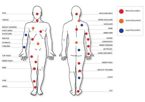 tattoo pain diagram female least painful spots for tattoo ink pinterest get a