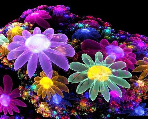 descargar fondos de pantalla flores de muchos colores hd fondos de flores para fotos para fondo celular en hd 20 hd