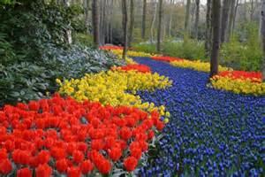 Best Flower Garden Best Flower Gardens Images