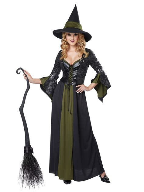 Witch And Wardrobe Costumes by Classic Witch Costume 01350 Fancy Dress