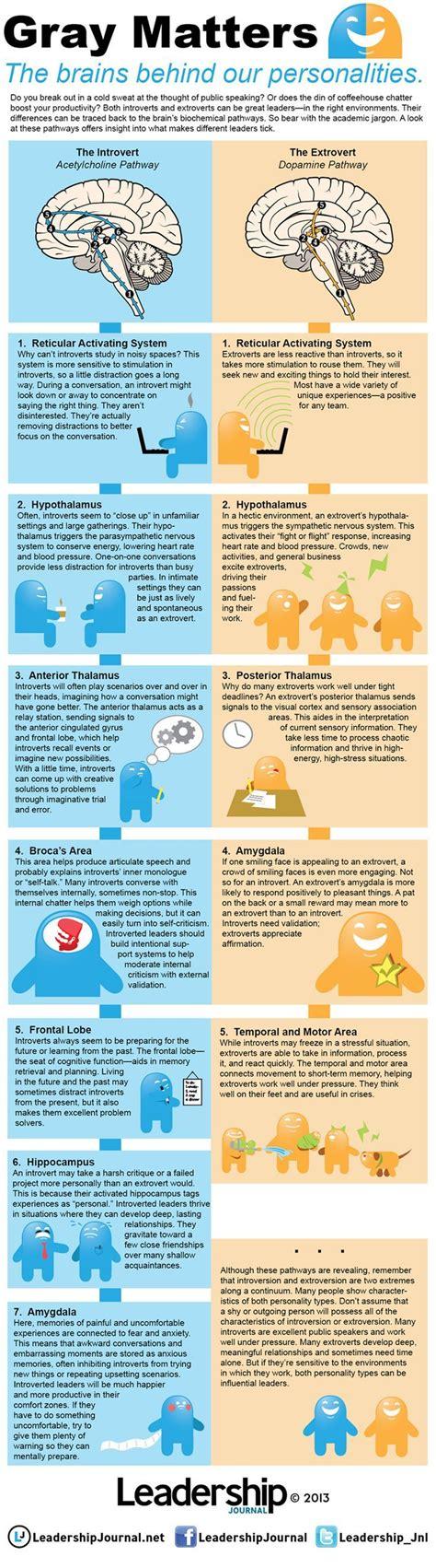 introvert vs extrovert of an introvert