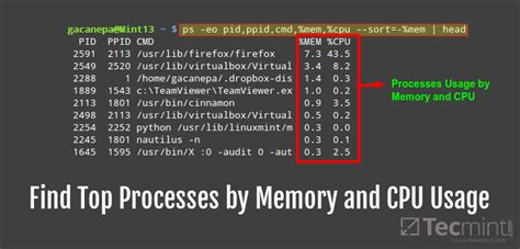 ram and cpu find top running processes by highest memory and cpu usage