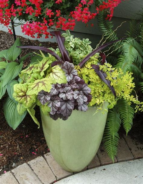 perennial container garden winter gardening perennials in containers need protection