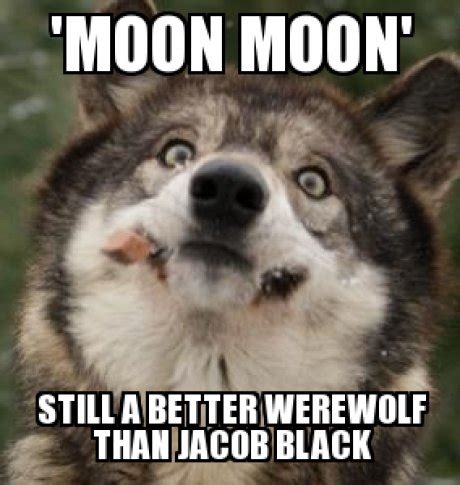 Wolf Meme - the official moon moon love in thread boards ie