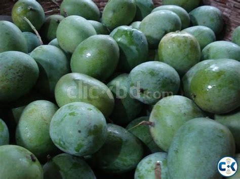Mango 100 Original formalin free 100 orginal chapainawabganj kanshat mango