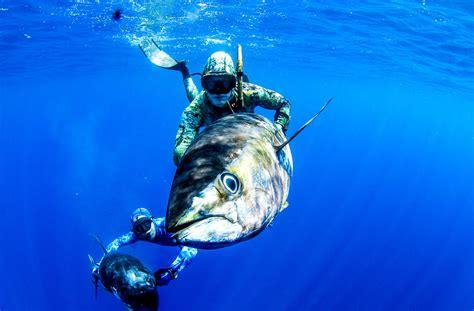 fishing with spear spearfishing panama page 2 info spearfishingpanama