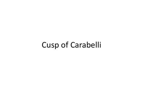 8 cusp of carabelli