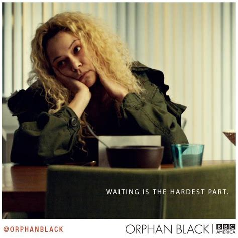 orphan film quotes 47 best images about orphan black quotes on pinterest
