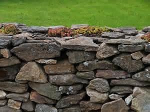 trockenmauer selber bauen anlegen und bepflanzen