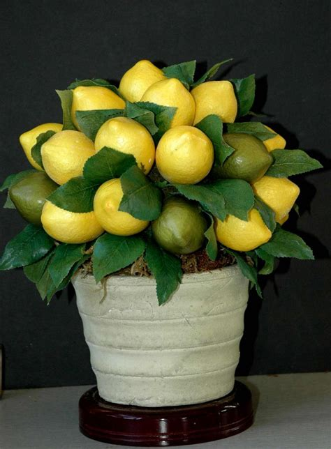 Can You Use Lime Instead Of Lemon For Detox Water by 1000 Ideas About Lemon Kitchen Decor On Lemon