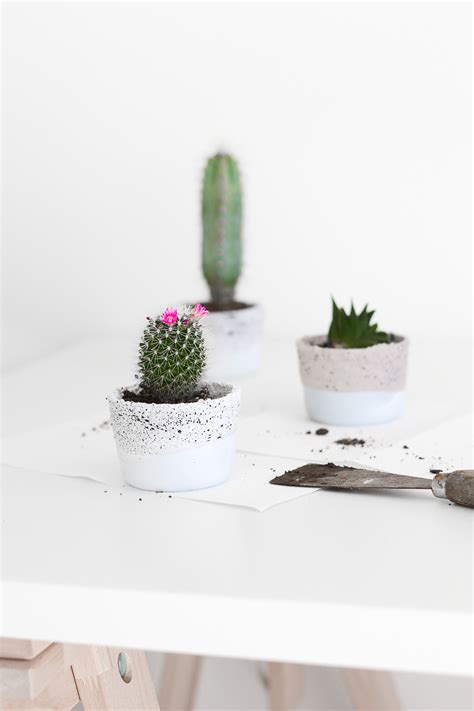 Small Concrete Planters by Small Glass Containers Into Planters