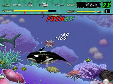 play free feeding frenzy online games. play online fish