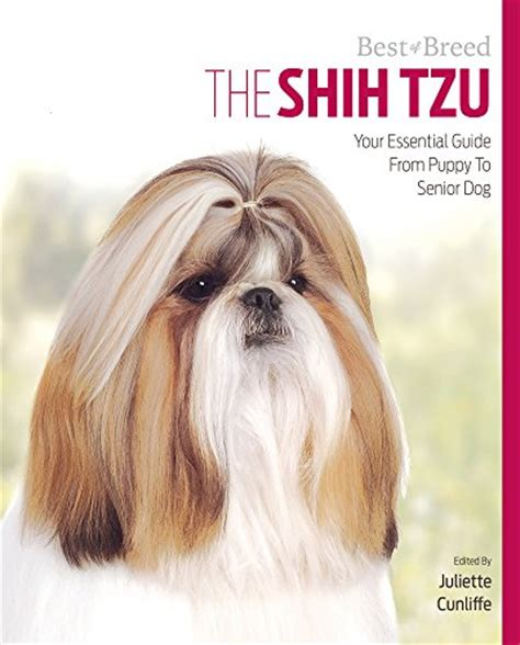 shih tzu guide galleon the shih tzu your essential guide from puppy to senior best of breed