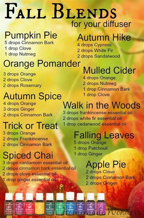 fall scents 25 best ideas about living on