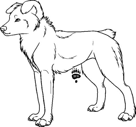 australian shepherd puppy coloring pages coloring pages
