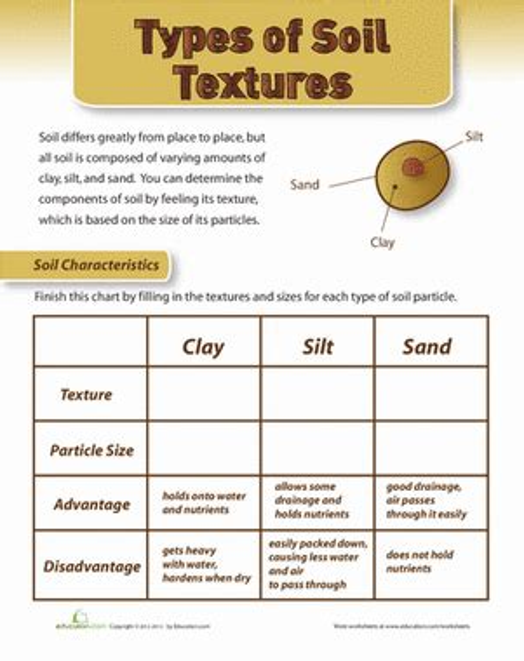 types of sheets types of soil worksheet