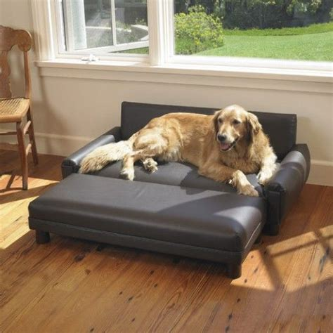 dog ottoman bed best 25 dog sofa bed ideas on pinterest cat couch buy