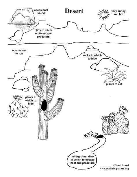 desert background coloring page desert habitat worksheets preschool desert best free